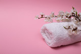 Beautiful spa composition with spring cherry blossom flowers and white towel on pink background.