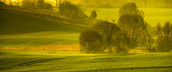 Spring rural landscape,rolling green hills-panorama © Mike Mareen