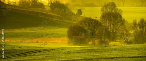 Spring rural landscape,rolling green hills-panorama