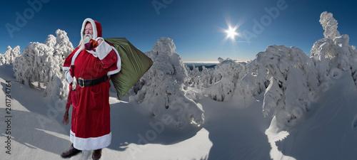 canvas print picture Weihnachtsmann im schneiten Wald Panorama