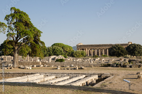 Paestum, zona archeologica con templi, strade e resti di costruzioni antiche
