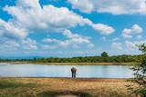 Elephant walking by the lake