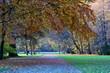 canvas print picture - Herbststimmung