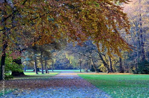 canvas print picture Herbststimmung