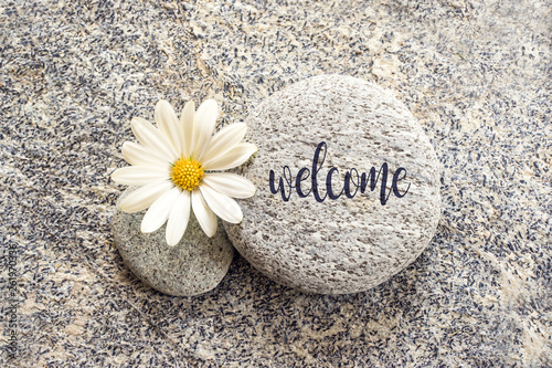 Word Welcome written on a stone background with a daisy © Delphotostock