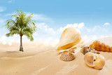 View of sandy beach with shells and palm tree - 261973923