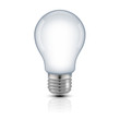 light bulb on white background - 262029990