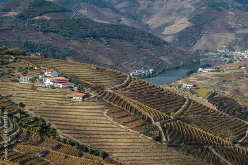 Douro - Portugal © Nelson