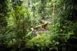 Green garden at Goa Gajah Elephant Cave Temple near Ubud, Bali, Indonesia