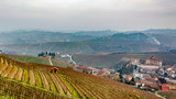 Scenic view of the freshly harvested grape fields in autumn in Barolo valley