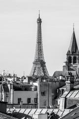 Eiffel Tower © Kat Zalewski