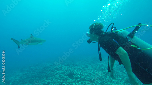 UNDERWATER: Young man diving in the Pacific meets an adult blacktip shark.