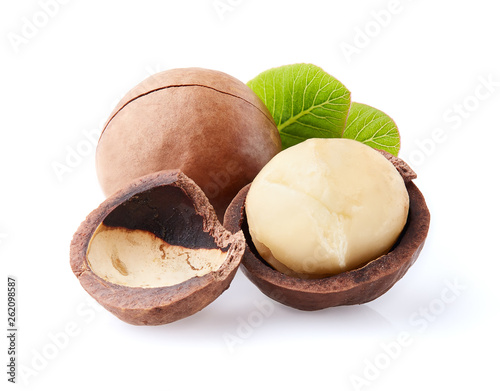 Macadamia nuts with leaves © Dionisvera