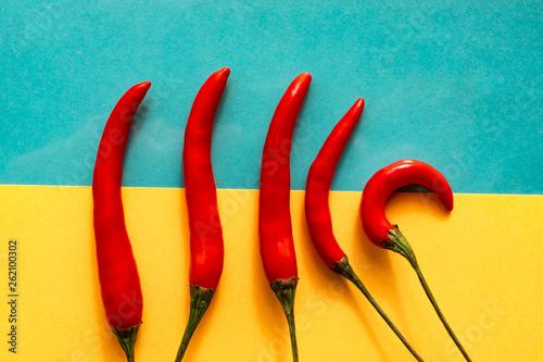 Piri piri chillies on yellow and blue background - 262100302
