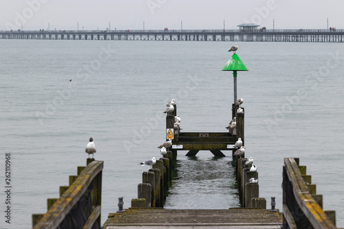 Acrylglas Pier old wooden pier construction with seagulls and navigation marker