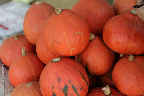 pumpkins for sale at farmers market - 262189519
