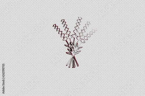Illustration of Lavender on transparent background - 262198703