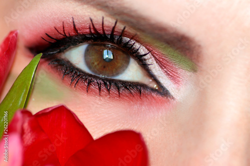 Makeup brown green eyes with red and green eyeshadow close-up with Tulip. - 262201166