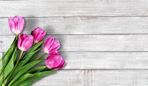Lavender flowers on light  wooden background