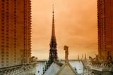 Notre dame cathedral arrow in Paris city