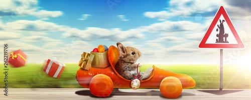 Osterhase unterwegs zum Osterfest! - 262219706