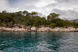 Trees and nature at Lokrum Island Coast, Dubrovnik, in Croatia