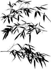 three black bamboo lush branches set illustration © Alexander Potapov