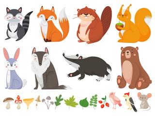 Funny wood animals. Wild forest animal, happy woodland fox and cute squirrel vector cartoon illustration set