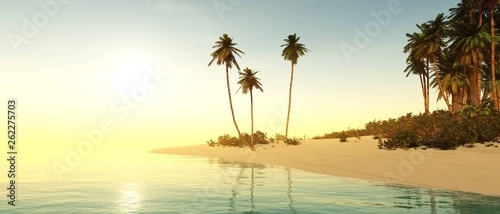 Beach with palm trees at sunset, tropical sea coast at sunset