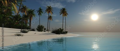 Beach with palm trees at sunset, tropical sea coast at sunset - 262275705