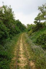 rails dans la campagne