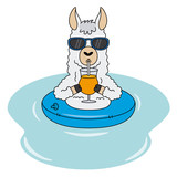 Llama with float, sunglasses and a drink