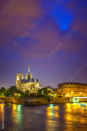 Notre Dame de Paris at night, France - 262391596