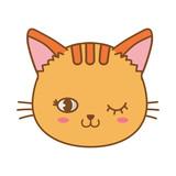 cat face wink eye