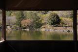 窓から見えた新緑に覆われた日本庭園