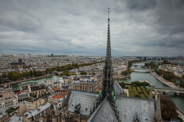 View of the Paris from the tower of Notre Dame De Paris