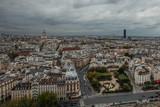 View of the Paris from the tower of Notre Dame De Paris