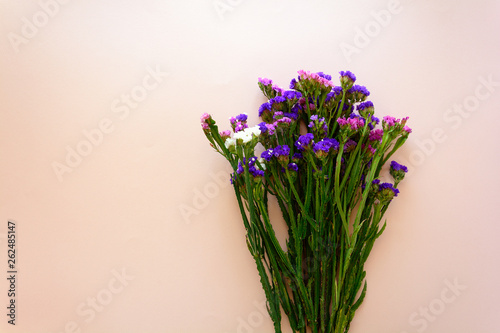 Bouquet of sea lavender flowers (Limonium) lying on pink background. Top view. Copy space - 262485147