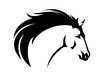 profile mustang horse head with flying mane - black and white animal vector portrait - 262508933
