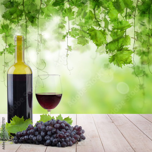 Vineyard in morning light, bottle with glass of red wine on the light wooden table - 262527757