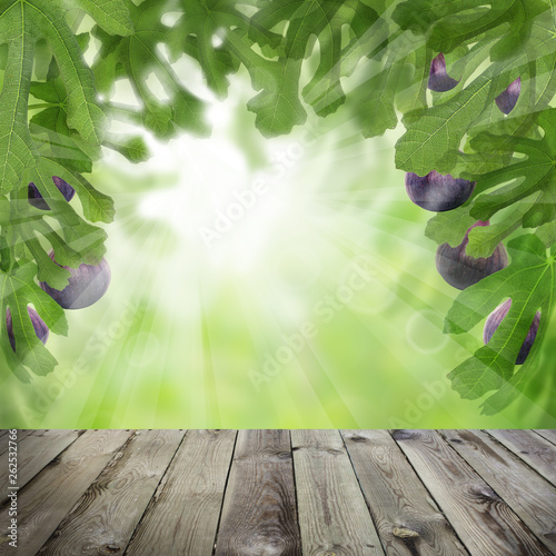 Figs tree garden and dark wooden table. Sunlight concept - 262532766