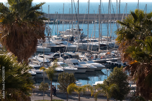 Row of Palms and luxury yachts docked in marina . Lluxury summer cruise, active life, luxury lifestyle vacation and holidays concept. Yachts  in the city's port.