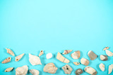 seashells and pretty stones lying on bright background - 262543569