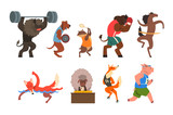 Animals doing exercise in the gym, fitness and healthy lifest.yle vector Illustrations on a white background