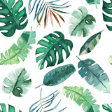 Jungle exotic seamless pattern, green tropical leaves, summer vector illustration on white background. Watercolor style - 262711183