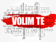 Volim te, I Love You in Croatian, word cloud in different languages of the world