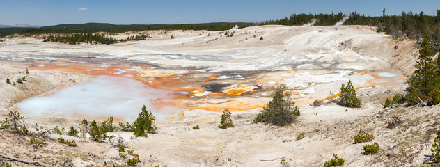 Fountain Paint Pot trail between gayser, boiling mud pools and burnt trees in in Yellowstone National Park  in Wyoming © sergioboccardo