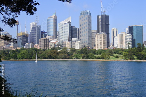 fototapeta na ścianę Park und Hafen in Sydney