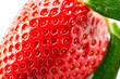 strawberry macro shot with green leaves on white background  - 262919333