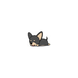 Cute chihuahua puppy black and brown color sleeping icon, vector illustration